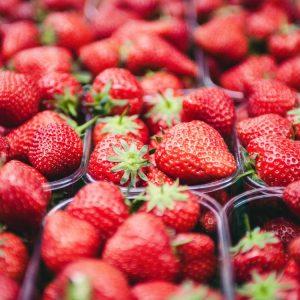 26 Juin 2018 – L'auto-cueillette des fraises pour la saison 2018.   Bienvenue à tous !